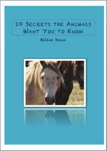 """""""10 Secrets the Animals Want You to Know"""" cover"""