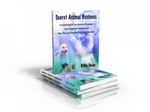 Secret Animal Business by Billie Dean