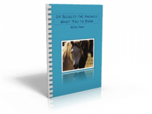 10 Secrets the Animals Want You to Know ebook